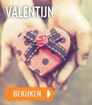 Valentijn Specials en Arrangementen
