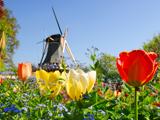 Topbestemmingen Nederland
