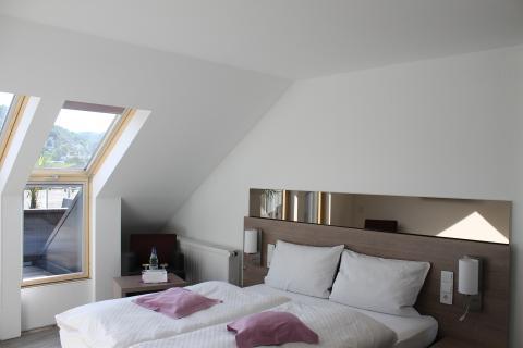 Tweepersoonskamer Rijnzicht met terras - Hotdeal