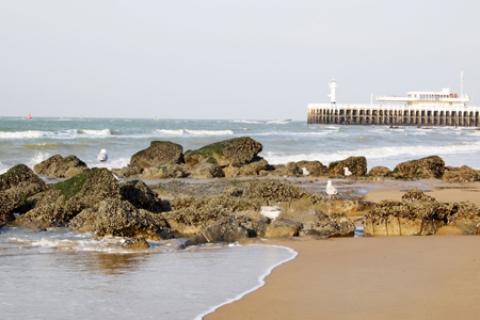 Küste Belgien